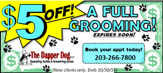 5 off full groom 10-30